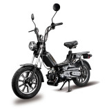 FACILE 50CC custa 1.399,00€